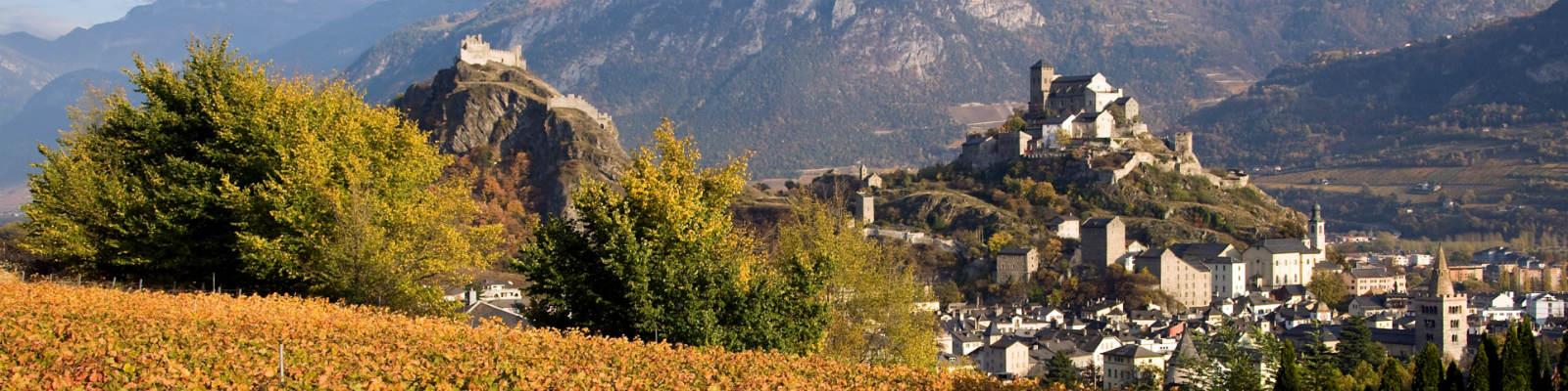 Vue_Chateaux_depuis_vignoble_automne@photogenic